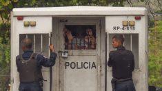 Dantesco video revela cómo tiranía de Maduro tortura reos con animales
