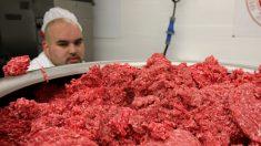 Retiran 27 toneladas de carne de res por preocupaciones de bacteria E. Coli