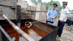 Norte-coreanos não dependem mais de alimentos contaminados importados da China