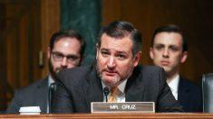 Senador insta al gobierno de Trump publicar transcripciones de las llamadas de Biden con Ucrania
