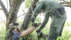 Departamento de Justicia procesa la mayor cantidad de crímenes relacionados a inmigración en 25 años