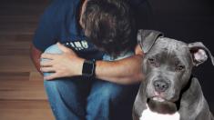 Perro presiente el suicidio de su dueño y hace algo insólito para evitarlo