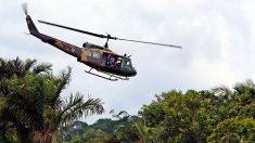 Desmatamento na Amazônia desaba 40,5%, mas boa nova não vira notícia