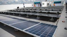 """Taxação de 60% da Aneel vai """"matar"""" energia solar no Brasil"""