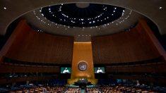 Manual de como ser amado pela ONU