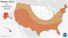 NOAA pronostica un invierno más cálido que el promedio para EE. UU.