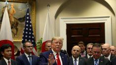 """""""Ridículas guerras sem fim"""", diz Trump ao retirar tropas americanas da Síria"""