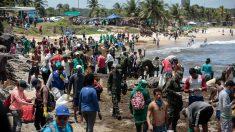 Governo publica guia para voluntários que atuam em praias do Nordeste
