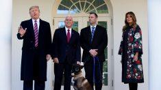 """""""Chico listo"""": Trump rinde homenaje al perro héroe herido durante la redada de Baghdadi"""