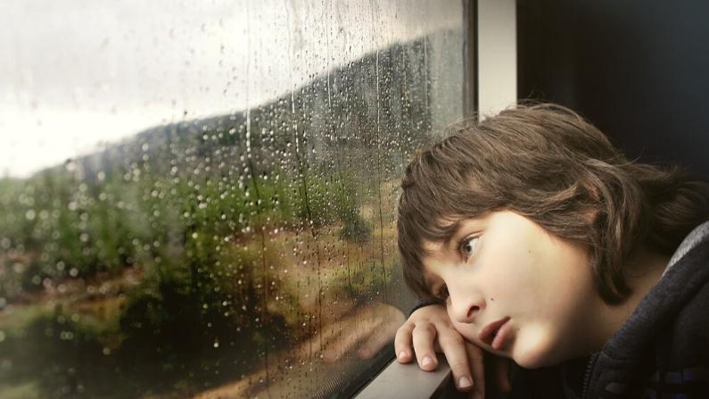 El desequilibrio del Bazo puede traer depresión. Imagen ilustrativa. (Free-Photos/Pixabay)