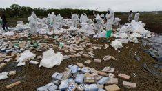 Autoridades de Panamá detienen a tres personas con 1241 paquetes de droga