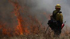 ¿De dónde vienen realmente los incendios forestales de California?