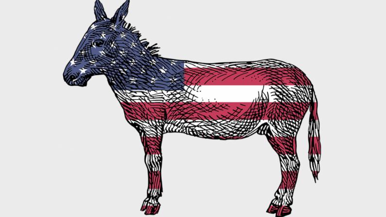 Un burro del Partido Demócrata es mostrado con la bandera americana. (Pixabay)