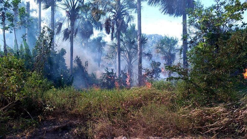 Incendio en Alter do Chão el 15 de septiembre de 2019. (Brigada de Bomberos Militar de Para)