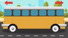 ¿En qué dirección va este autobús? El 80% de los niños menores de 10 años pueden resolverlo al instante