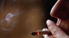 Relacionan el tabaquismo con el riesgo de desarrollar depresión y esquizofrenia