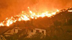 Cómo una familia luchó para proteger su hogar durante el incendio forestal de Woolsey