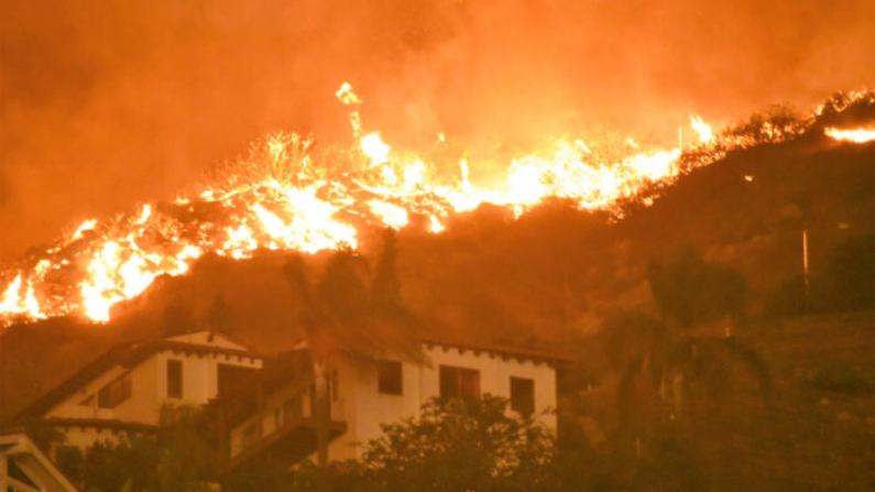 El incendio forestal de Woosley arde en Malibu, California, en noviembre de 2018. (Cortesía de Kristin Crowley)