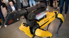 Cuestionan el uso de un perro robot en el escuadrón antibombas de Massachusetts