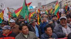 ¿Cómo reaccionó Bolivia al informe de la OEA?