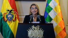 Gobierno de Bolivia envía al Parlamento un proyecto para convocar elecciones