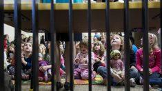 ICE: 3771 depredadores sexuales infantiles fueron arrestados en 2019