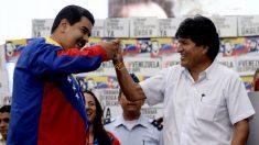 """Fraude electoral de Evo Morales: """"copy y paste"""" de Maduro y tiranías de izquierda"""