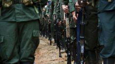 Miembros de las FARC asesinan a seis indígenas en Venezuela, denuncia ONG