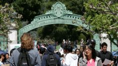 """""""Americanos rurales"""" son """"gente mala que tomaron malas decisiones en la vida"""", dijo tutor de Berkeley"""