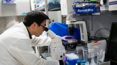 Miles de científicos estadounidenses venden sus investigaciones a China, cuestiona el Senado