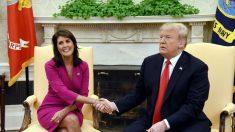 """Nikki Haley dice que Trump es """"sincero"""", y que ella """"nunca"""" dudó de la aptitud de él para el cargo"""