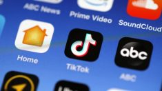 Popular aplicación china 'TikTok' plantea problemas de seguridad nacional para EE.UU.