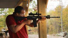 Las ventas de armas suben a pesar de las medidas demócratas de control de armas