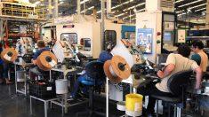 Brasil cria 841,5 mil empregos formais de janeiro a outubro