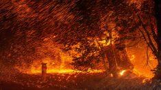 Miles de personas huyen de sus casas mientras los incendios se propagan por Santa Bárbara, California