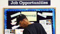 Estadounidenses que buscan trabajo alcanza su número histórico más bajo