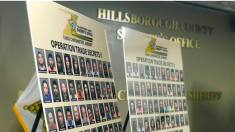 104 personas arrestadas por trata de personas en Florida
