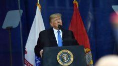 """""""Verdaderamente un honor"""": Trump, el primer presidente que asiste al desfile del Día de los Veteranos"""