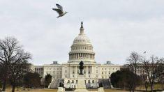 Senado aprueba proyecto de ley provisional para evitar cierre del gobierno