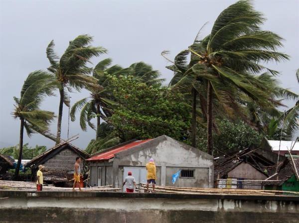 Varias personas manipulan largas cañas procedentes de hogares destrozados, este lunes en Calabanga (Filipinas). Miles de personas están siendo evacuadas hoy en el noreste de Filipinas ante la llegada prevista mañana del tifón Kammuri. EFE/ Jonnel Maribojoc