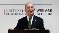 """Bloomberg dice que Trump podría """"comerse vivos"""" a los candidatos demócratas en las elecciones de 2020"""