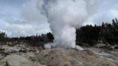 Géiser más activo del mundo en Yellowstone rompió récord de erupciones este año