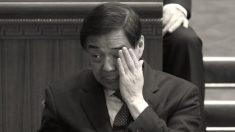 """""""Principito"""" hijo de Bo Xilai, exfuncionario chino encarcelado, trabaja para una empresa canadiense"""
