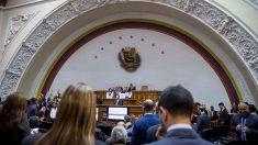 Asamblea Nacional de Venezuela aprueba el voto virtual de los diputados en el exilio