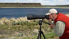 La vida silvestre desde la perspectiva de especies en peligro de extinción