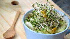 Los poderosos brotes de brócoli desintoxican rápidamente contaminantes del organismo