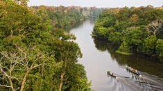 Viaje al corazón del Amazonas