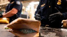 Distribuidor de fentanilo de la red oscura fue condenado a 7 años de prisión