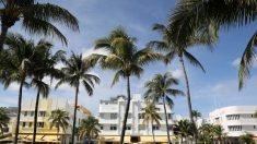 Florida se sitúa entre los siete estados más caros y consumidores de Estados Unidos