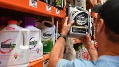 Ministerio del Ambiente de Costa Rica prohíbe el glifosato en Áreas Silvestres Protegidas